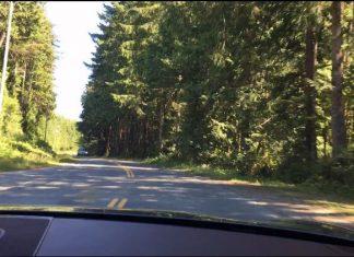 menikmati perjalanan di mobil
